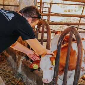 dostizanje standarda dobrobiti životinja u stočarstvu za 2021. godinu
